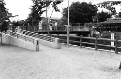 1980年頃公園橋.jpg