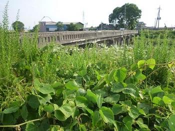 2013年5月千部橋(旧)1.jpg