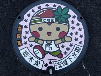 「とちまるくん」のカラーマンホール蓋.jpg