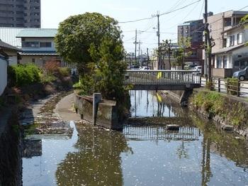中洲親水公園3.jpg