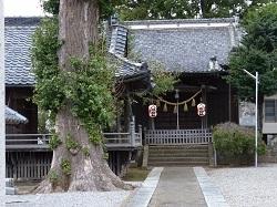 八坂神社2.jpg