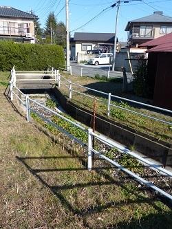 八幡橋の上流側.jpg