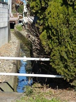八幡橋の上流側水路.jpg