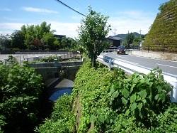 八雲橋0.jpg