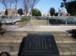 公園橋4.jpg
