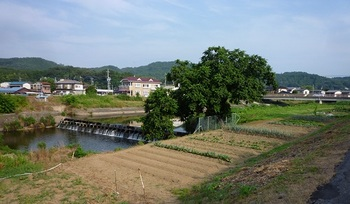 六か村用水6.jpg