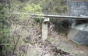 内籠川7.jpg