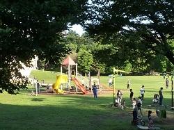 和光樹林公園1.jpg