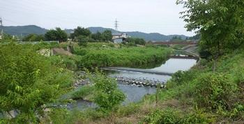 大柳橋1.jpg