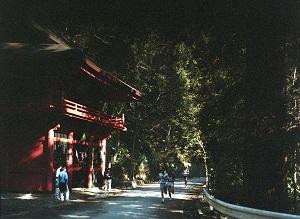 太平山廻遊駅伝12.jpg