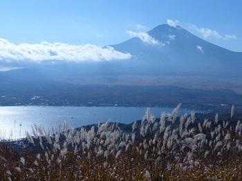 富士山(山中村より).jpg
