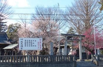 川連天満宮1.jpg