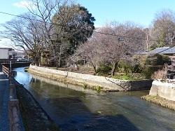 巴波川への落ち口.jpg