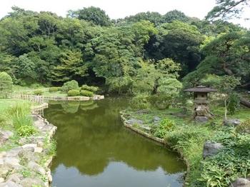 新江戸川公園1.jpg