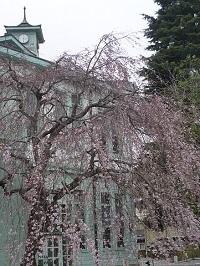 旧栃木町役場庁舎8.jpg