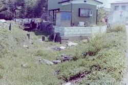 旧赤津川分水堰付近.jpg
