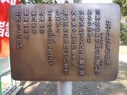 星宮神社(平柳町)3.jpg