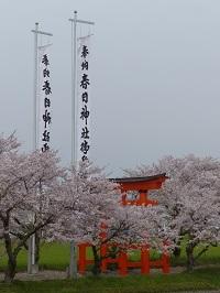春日神社(横堀)3.jpg
