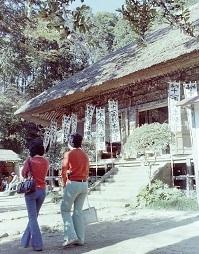 杉本寺2.jpg