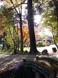 村檜神社1.jpg
