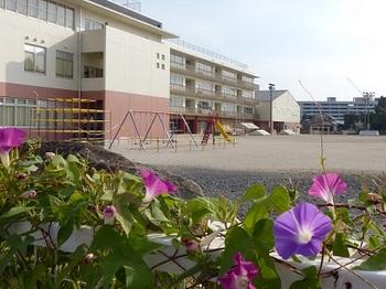 栃木中央小学校.jpg