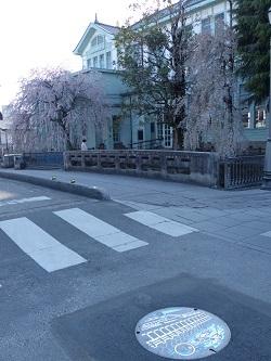 栃木市マンホール蓋カラー版1.jpg