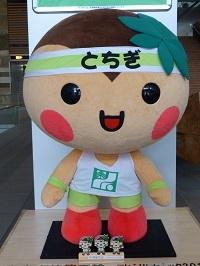 栃木県庁10.jpg