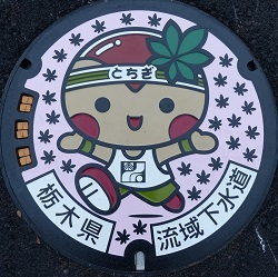 栃木県流域下水道カラー版.jpg