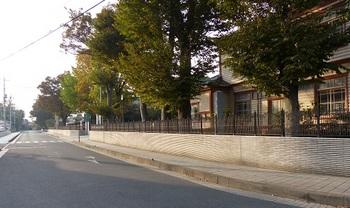 栃高南側道路1.jpg