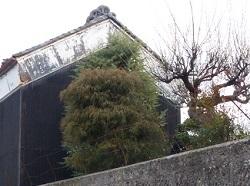 橋本油店2.jpg