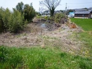 永野川右岸に残る旧河道.jpg