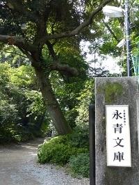 永青文庫2.jpg