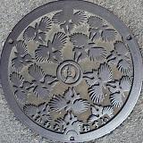 河内町(パターン).jpg