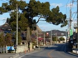清瀬橋2.jpg