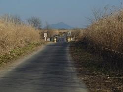 渡良瀬遊水地ウォーク5.jpg