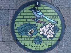 狭山市カラーマンホール蓋.jpg