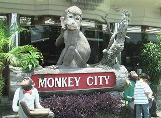 猿2.jpg