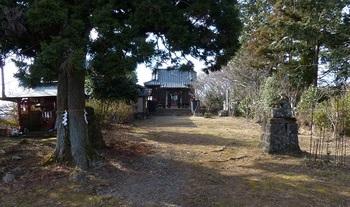 琴平神社1.jpg