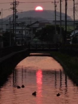 県庁堀の夕陽.jpg