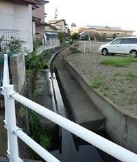 県庁堀西北角4.jpg