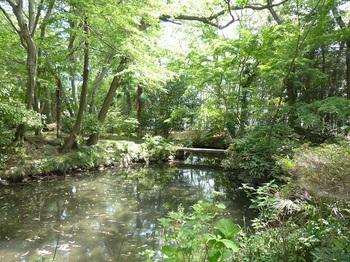 翁島庭園の池.jpg