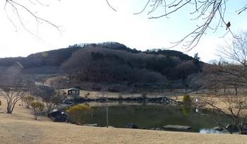 観音山13.jpg