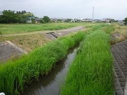 都賀町原宿ウォーク15.jpg