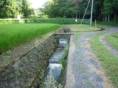 栃木市吹上町の街中を貫流する水...
