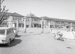 1965年4月栃一小正門1.jpg