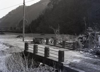 1982年1月種入橋.jpg
