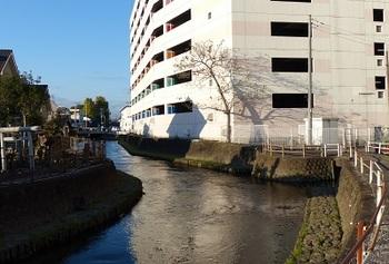 ぬかり沼川8.jpg