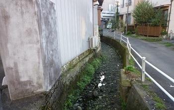 ぬかり沼川6.jpg