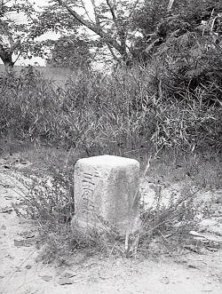 三等三角点錦着山1964年8月撮影.jpg