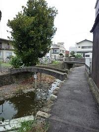 入舟川4.jpg